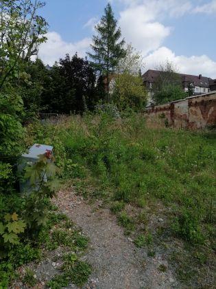 Bild: Auf dem Grundstück